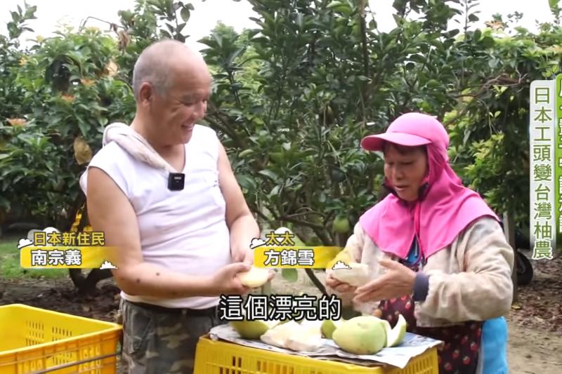 日本工頭來台灣變成麻豆柚農。(圖/我們一家人PLUS提供)