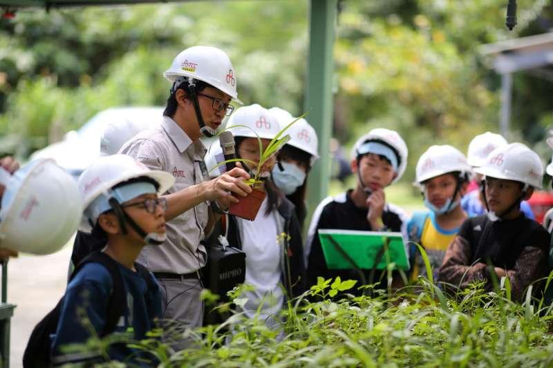 台泥和平礦區積極投入生態系復育。(台泥提供)