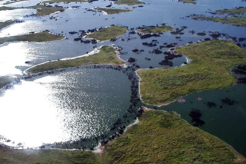 巴西潘塔納爾(Pantanal)濕地發生數十年來最嚴重火災,這是它的原貌。(Alicia Yo @Wikipedia/CC BY-SA 3.0)