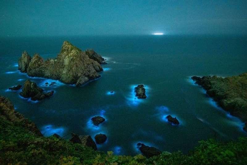馬祖各個島嶼的藍眼淚都擁有不同的景觀,象徵著生態資源與水產的豐富。(圖/台灣旅行小幫手提供)