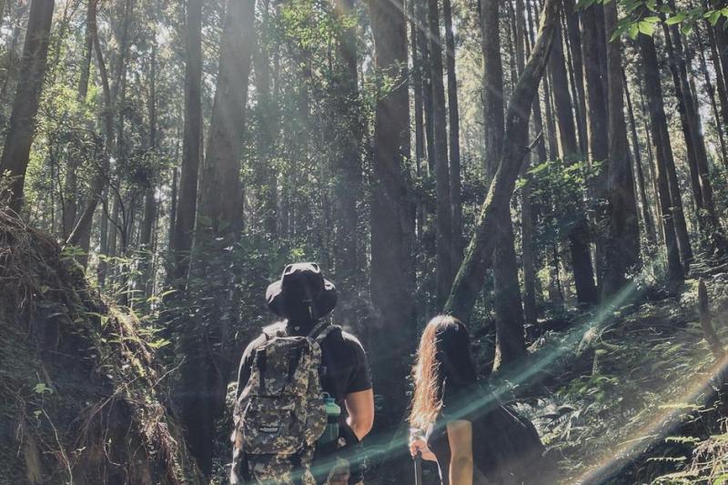 台灣中級山路線推薦-苗栗加里山登山步道。(圖/jocelyn_620@instagram提供)