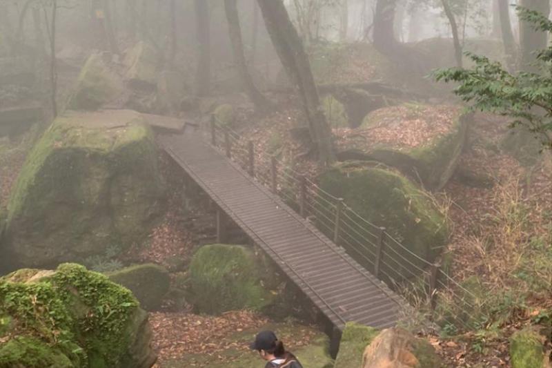 苗栗加里山步道環境。(圖/zhi0314@instagram提供)