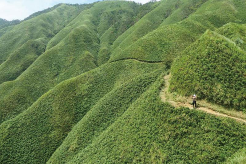 抹茶山。(圖/威昇整合行銷提供)