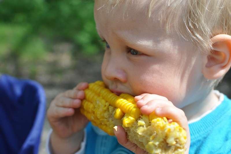 聯合國糧食及農業組織3日表示,11月全球糧食類大宗商品價格大漲至接近6年來最高水準,小麥與玉米出口價格雙雙攀升(取自Pixabay)