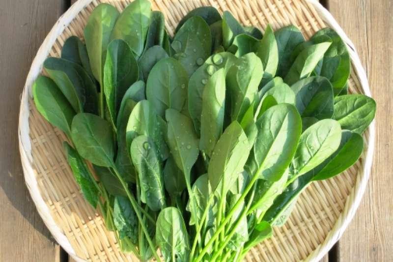 深綠色蔬菜一般被當作攝取營養的最佳首選,但如今卻傳出食用深色蔬菜會「傷腎」,真的是這樣嗎?(圖/photoAC)