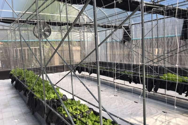 台中農改場協助建置教學溫室、教學用的堆肥堆置場以及恆溫機、檢測儀等設備。(圖/行政院中部辦公室提供)