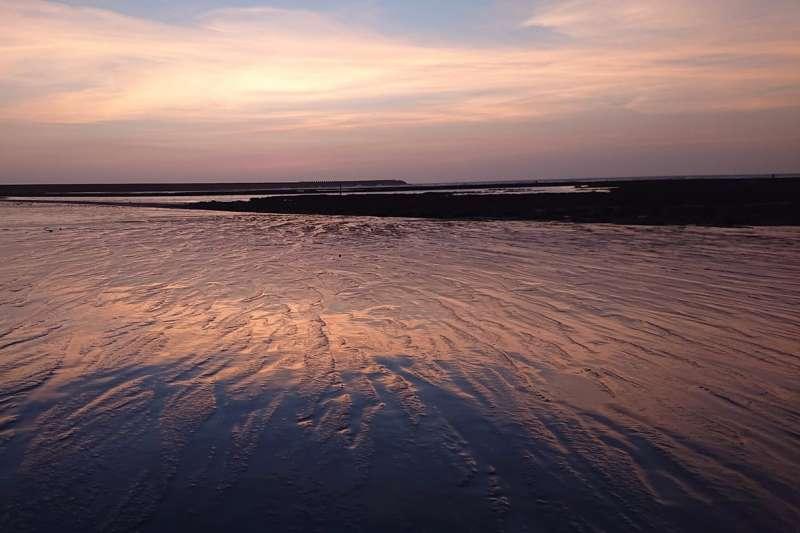 網路近期傳出大潭藻礁沒有生物、藻類很爛等訊息,事實查核中心提出3點證據闢謠。(資料照,取自珍愛桃園藻礁網站)