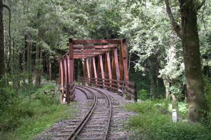 水山巨木步道全長約1.6公里,入口離沼平車站步道只要5分鐘,原為阿里山森林鐵路水山支線,停駛後規劃為林間步道。(圖/嘉義林管處提供)