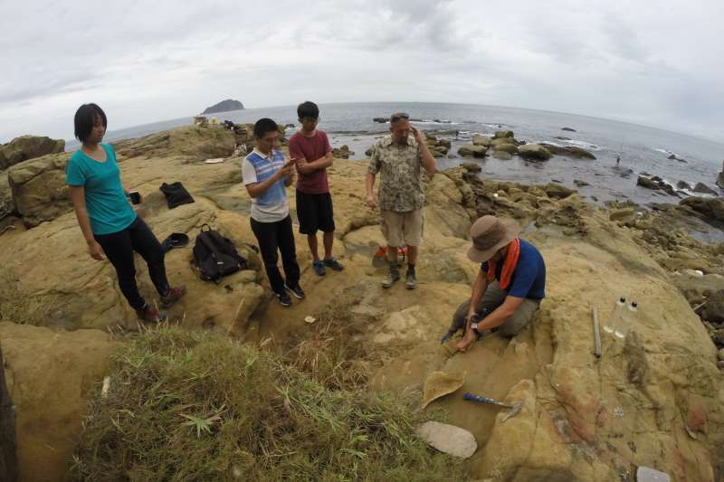 在台灣北海岸發現史前巨蟲化石洞穴,其頂部形成一個羽毛狀的塌陷結構。(國立台灣大學地質系教授施路易提供)