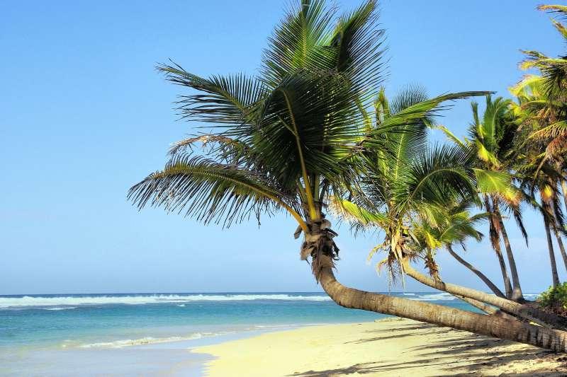 古巴2男1女因船隻翻覆受困無人荒島,33天後奇蹟獲救。島嶼、椰子樹。(Pixabay)