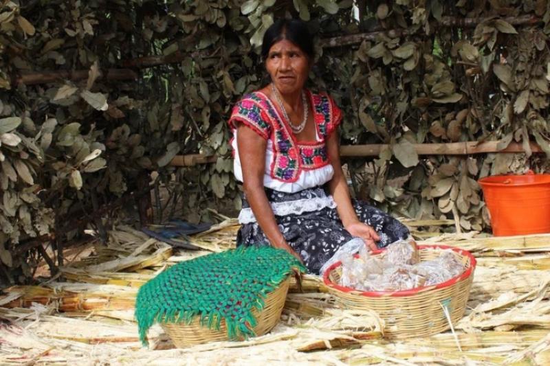 印度無家可歸的女性每天都遭遇這樣如此可怕的日常生活…(圖/取自pixabay)
