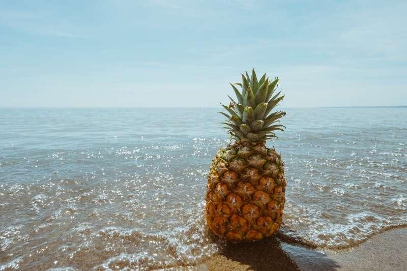 李時珍《本草綱目》說道,鳳梨有相當高的營養價值。(圖/取自pixabay)