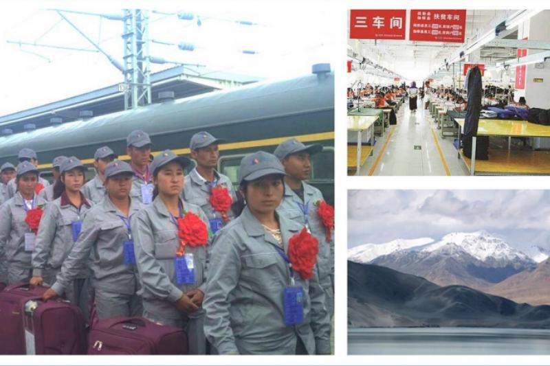 中國智庫意外走漏的報告顯示,中國政府針對新疆維吾爾族人的「勞務輸出計劃」,恐已犯下強迫勞動和強制遷移等反人類罪。(截自鄭國恩報告)