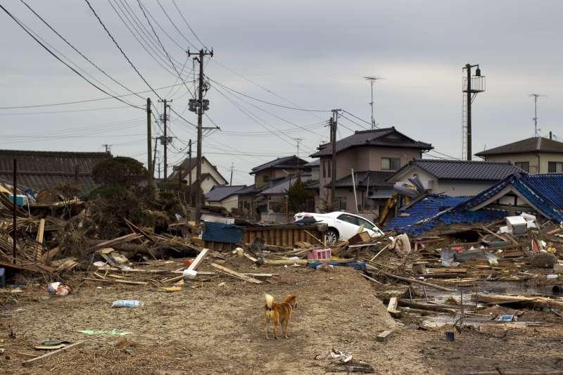 311浩劫十周年。福島核災。圖為2011年4月,距福島20公里的南相馬市小高町鎮。(AP)