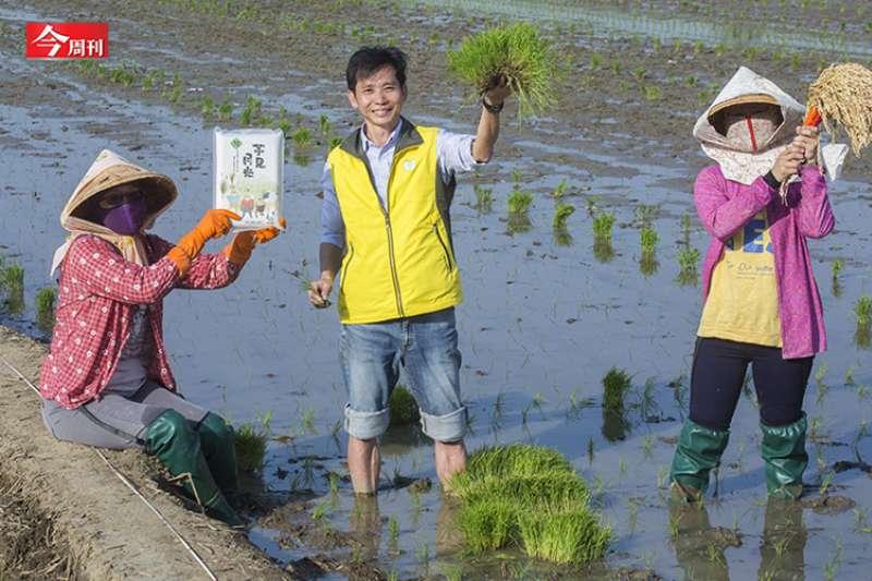 台南區農改場嘉義分場長陳榮坤,研發水稻品種近20年,育成5種水稻品種,包含極具代表性的台版越光米「台南16號」。(圖片來源:今周刊)