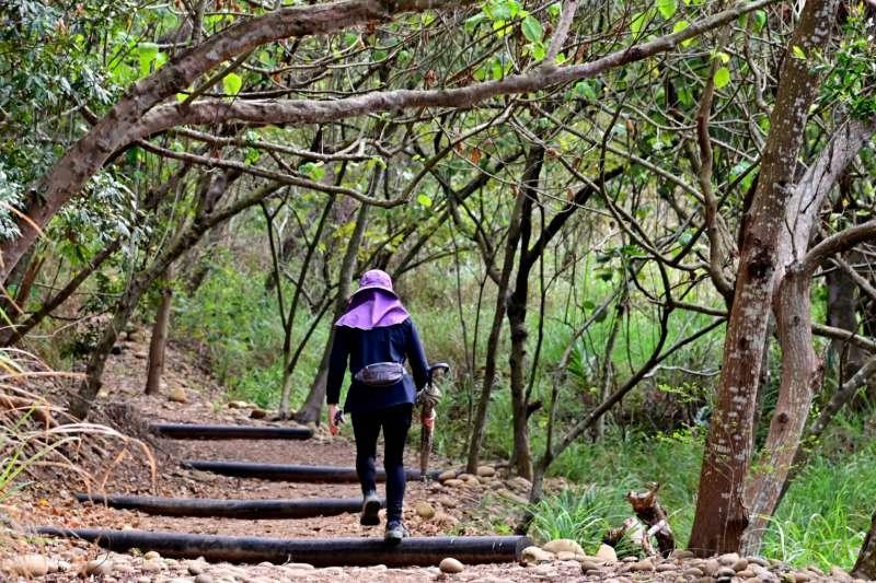 大肚環保公園登山步道整建完成,分為南、北兩條步道,民眾可自行選擇登山路線。(圖/台中市政府)