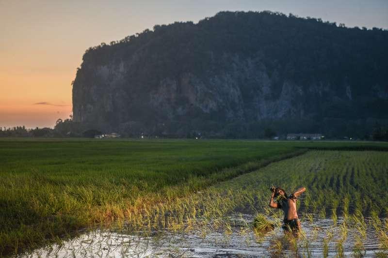 馬來西亞導演張吉安作品《南巫》劇照,劇中田伯爺之舞片段。(傳影提供)