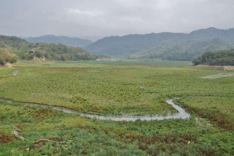 20210326-台灣面臨半世紀以來最嚴峻旱象,苗栗明德水庫蓄水量只剩約1成,集水區已成一片大草原。(盧逸峰攝)