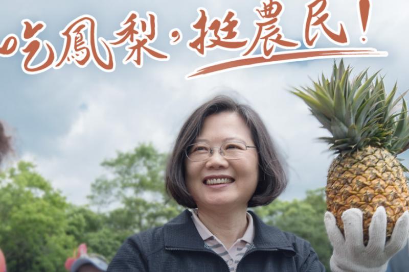 總統蔡英文以「首席鳳梨推廣大使」之姿,掀動了台灣「鳳梨熱」的熱潮。(照片來源:蔡英文Facebook)