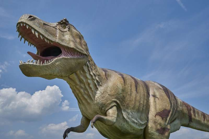 加州大學最新研究顯示,地球上曾出現過25億隻暴龍,存活歲月長達數百萬年。(by RoyBuri@pixabay)