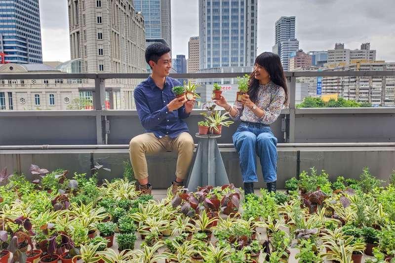 民眾可持發票或回收廢電池至台灣中油指定加油站兌換樹苗, 一起守護地球,留給下一代永續美好的環境。(圖/台灣中油提供)
