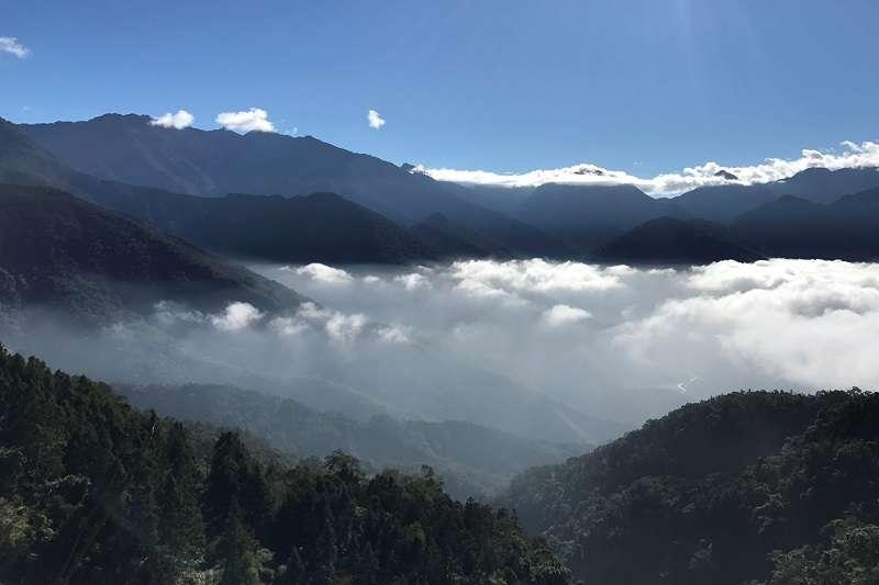 藤枝每到冬季雲霧重,登高可觀群山雲海。(圖/屏東林管處提供)