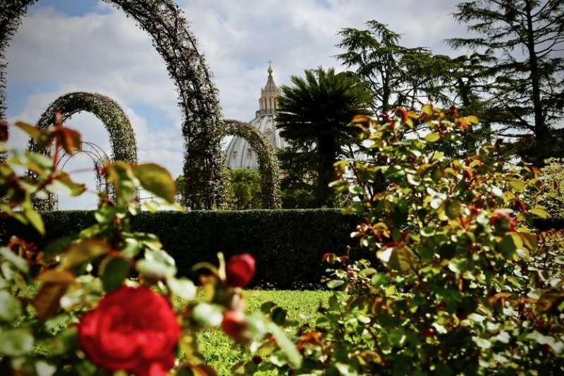 教宗花園碧綠滴翠的樹木(曾廣儀攝)