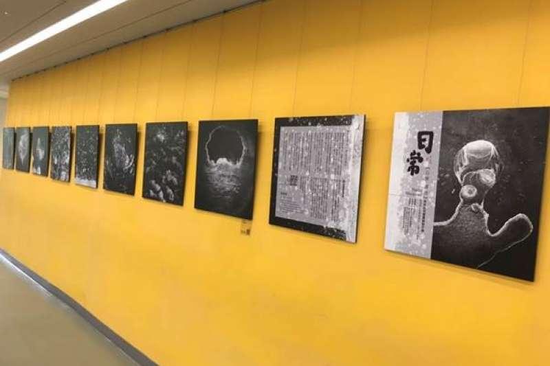 國資圖 2F展出侯純純老師的作品《日常.須臾》。(圖/國立資訊圖書館)
