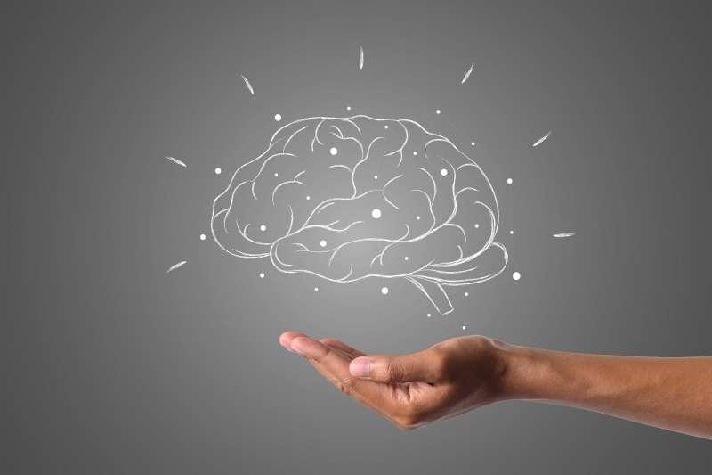 腦部可塑性(brain plasticity)這個詞的意思是指腦部有能力重組腦中的神經迴路。(hainguyenrp@pixabay)