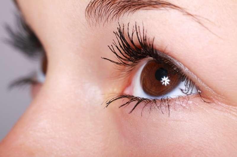 如果要了解視網膜對於視覺的影響,該是來看看其中神經元的分布方式了。(PublicDomainPictures@pixabay)