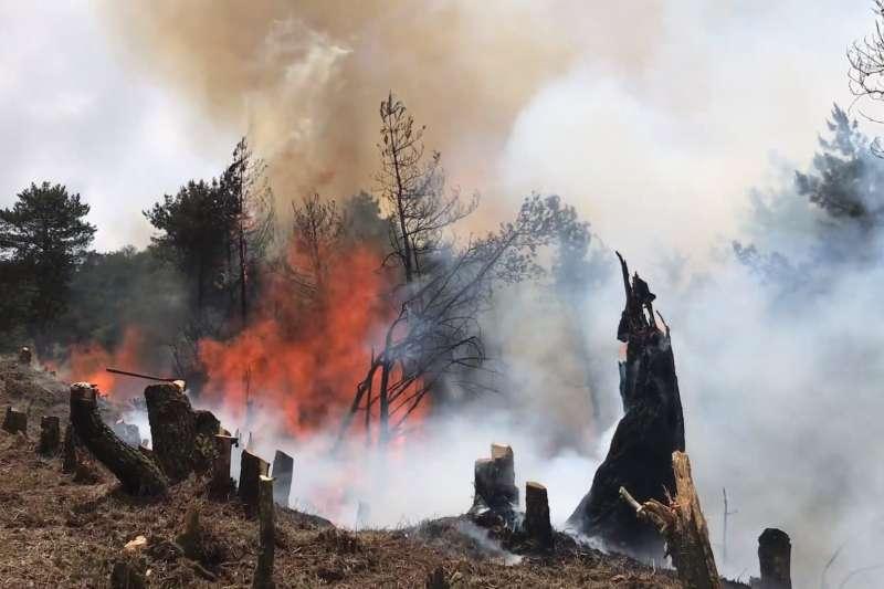 林務局嘉義林區管理處獲報位處海拔3200公尺的玉山國家公園所屬杜鵑營地發生林火,隨即動員集結滅火,火勢終於在今天早上熄滅,共延燒12天。(圖/玉管處提供)