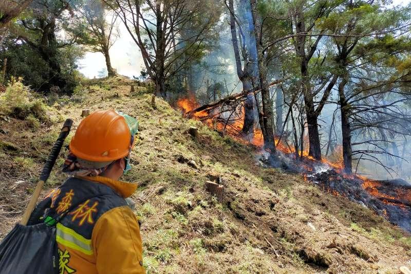 森林護管員看著防火線開闢成功擋住熊熊火勢。(圖/玉管處提供)
