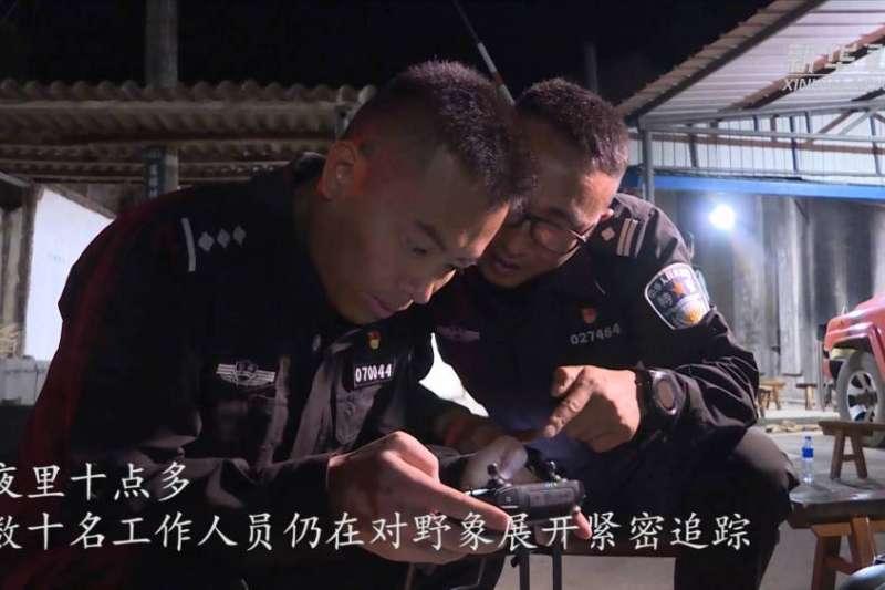 28日夜,記者偵探監控人員,在距離象野只有600多米外的地方實時監控野象行。(新華社)