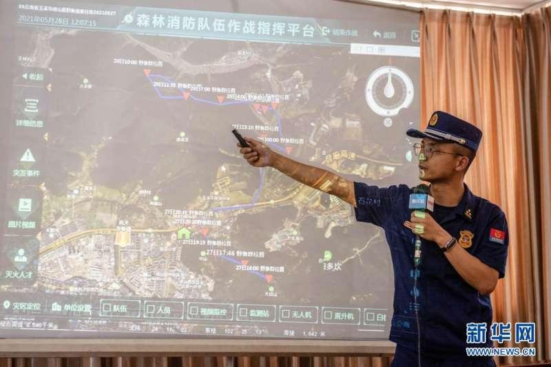 5月28日,工作人員介紹15頭野象在雲南省玉溪市峨山縣境內的遷移路線。(新華社)