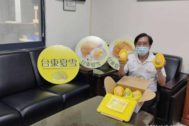 水保局推薦防疫網購也要食當季,台東夏雪芒果季節開跑。(圖/水保局台東分局提供)