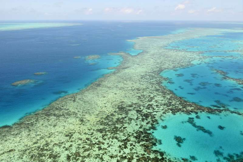 澳洲大堡礁(AP)