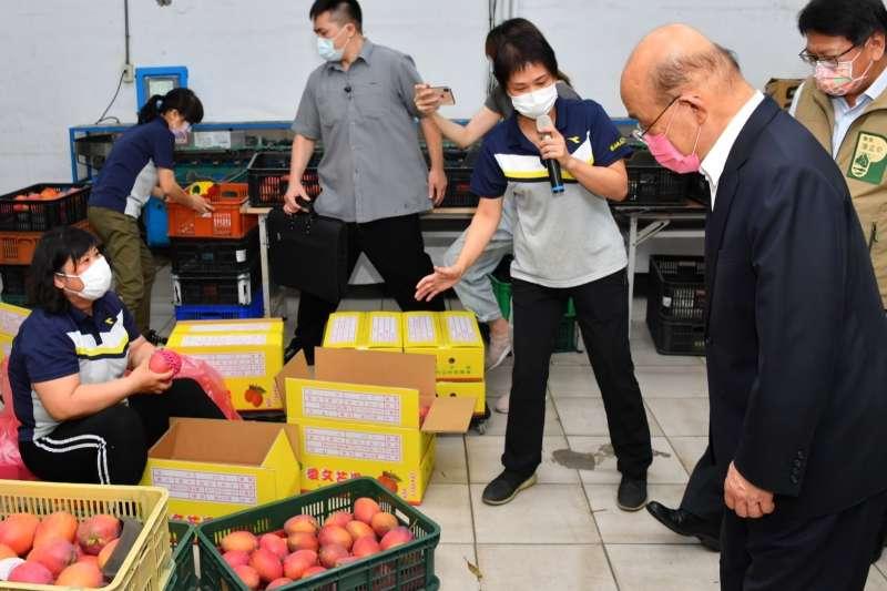 20210629-行政院長蘇貞昌視察枋山地區農會芒果集貨包裝場。(行政院提供)