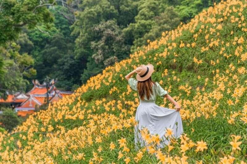 金針花海景點-花壇虎山巖。(圖/tripbaa趣吧提供)