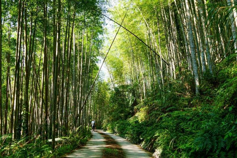 台東 關山紅石林道(圖/台灣旅遊小幫手 提供)