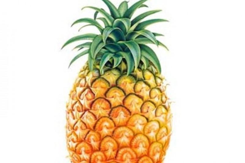 王筱淇建議,吃完粽子後,適當吃鳳梨、奇異果、木瓜等酵素多的飯後水果,掌握促進腸胃蠕動等6個小撇步,就能「聰明吃粽子,健康過端午」。(取自網路)