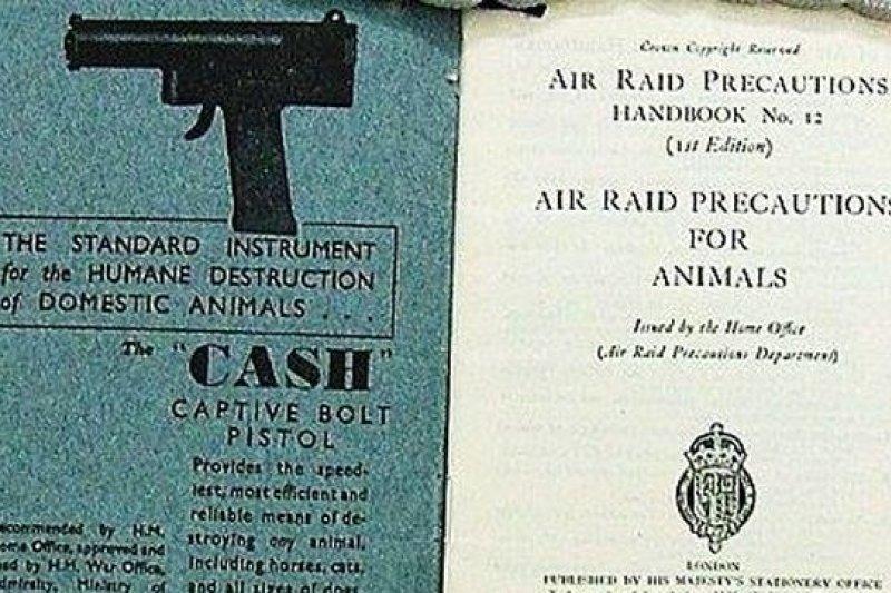 1940年9月,德軍開始空襲倫敦,引發新一波的寵物安樂死熱潮(取自網路)