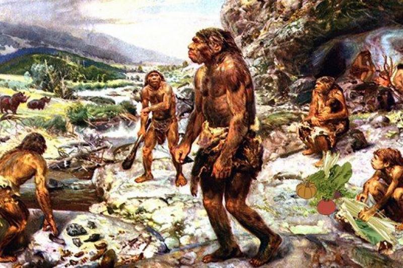 尼安德塔人的便便化石,提供了許多有趣證據。(取自網路)