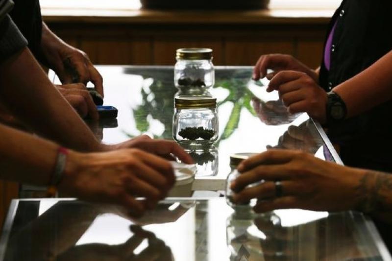 美國華盛頓州7月開始讓娛樂用大麻合法化,創造無限商機。(美聯社)