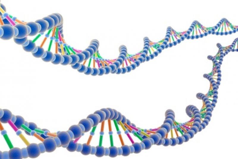英國政府領導的大規模基因研究計畫,各方投資金額約達新台幣150億元(取自網路)