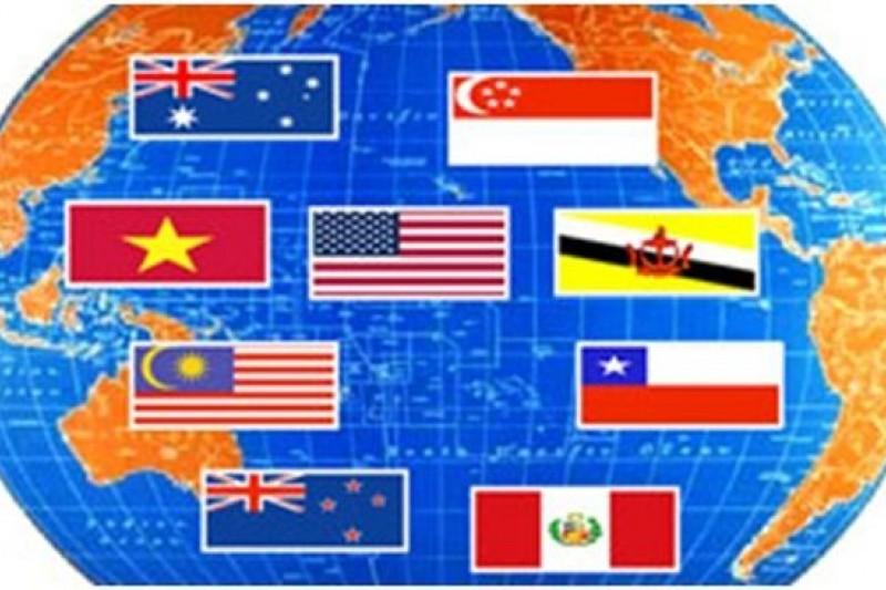 為了台灣的未來,TPP談判千萬不可和兩岸協議一起被封存了。(取自越南之聲官網)