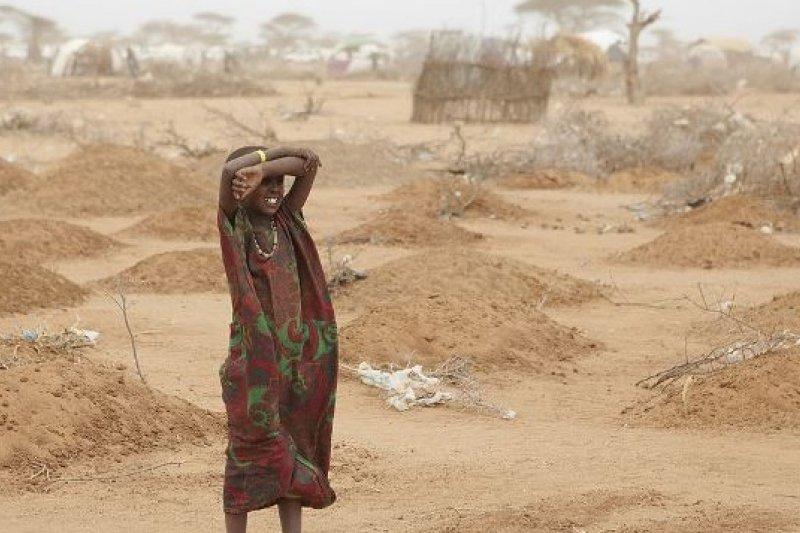 聯合國發布的報告《2013年全球糧食危機現況》指出,富裕國家每年浪費全球逾三成的糧食(維基百科)