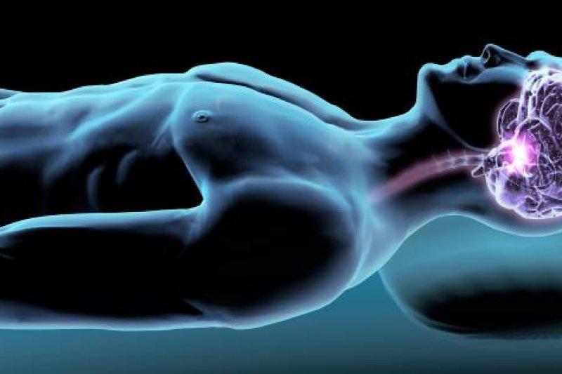 睡眠時腦部的排毒能力是清醒時的10倍,可以清除掉腦內有害蛋白質(取自網路)