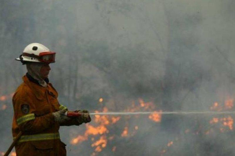 澳洲新南威爾斯省的大規模野火燒進第6天,火勢仍然難以控制(取自網路)