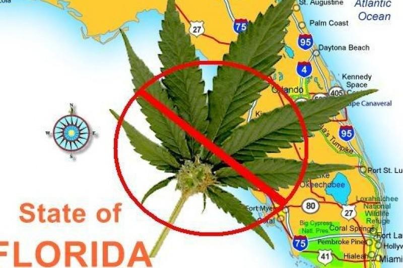 美國佛羅里達州的大麻事業已蓄勢待發(Medical Marijuana Tampa官方網站)