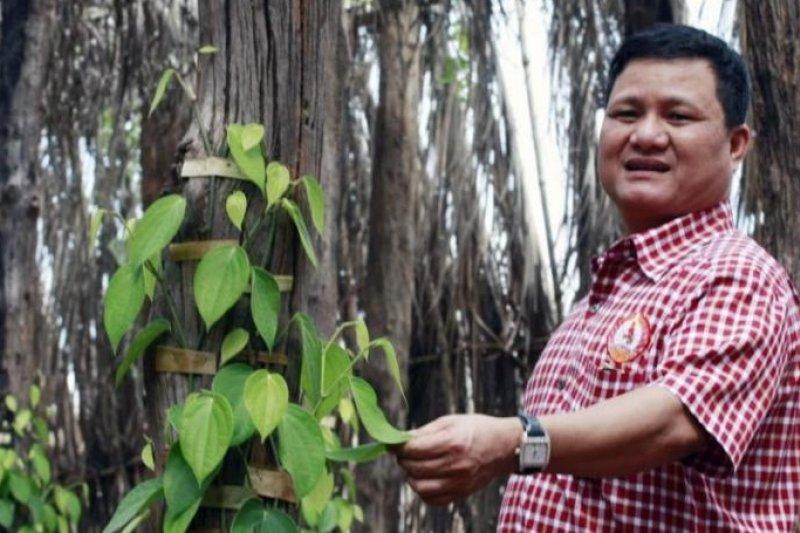 柬埔寨大亨狄皮。